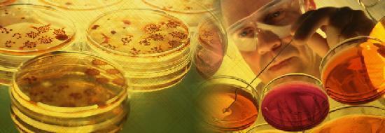 как лечить грибок в носу