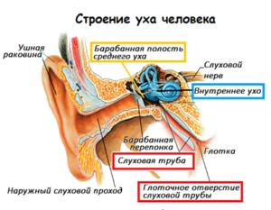 Тяжесть в ухе