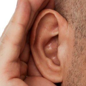 экзема на ушах фото