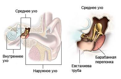 тест слуха все частоты-1