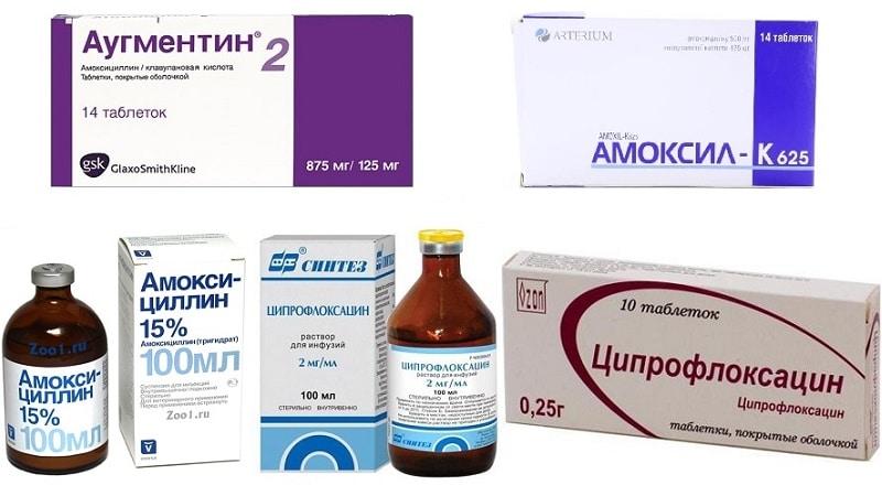 антибиотики при гнойном отите у взрослых