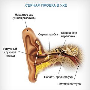почему чешется ухо внутри у человека