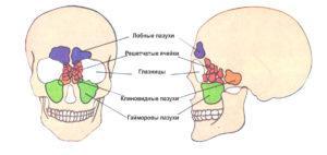 Синусит ринит симптомы лечение