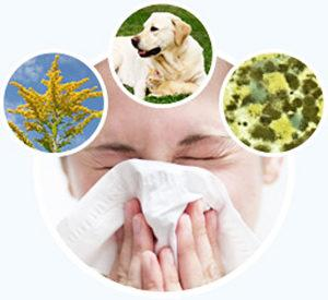 -чем и как лечить аллергический ринит при беременности