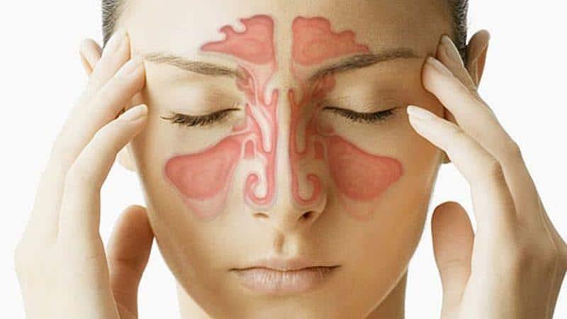 анатомия и функции придаточных пазух носа