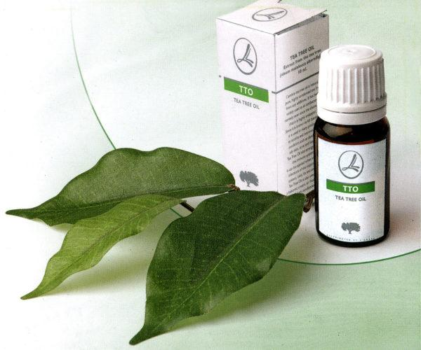 how to use tea tree oil for cough