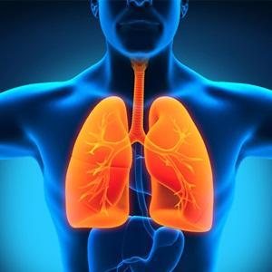 чем и как лечить бронхиальный кашель