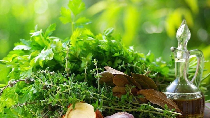 лекарства на травах от кашля